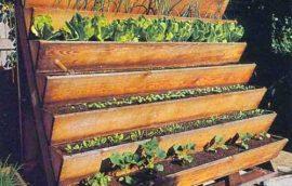 Jardinería Vertical: Tipos e ideas de jardines verticales