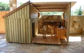 Casas de lujo para tus mascotas